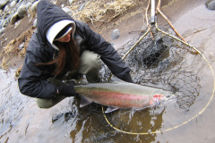 Oregon Fishing Guide